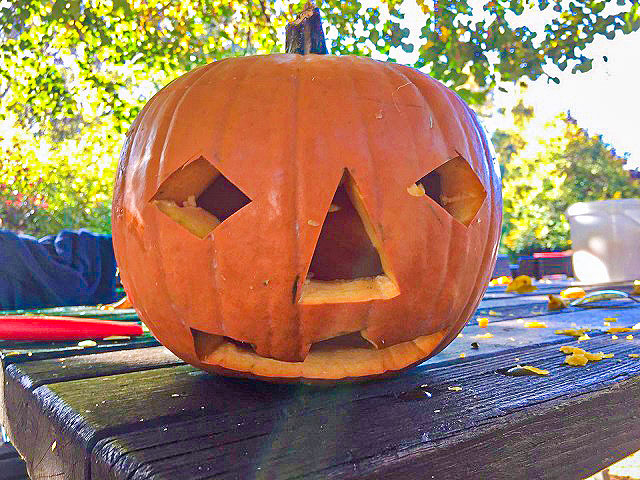 Die nächsten Ferien kommen bestimmt - Ferienfreizeiten in den Oktoberferien